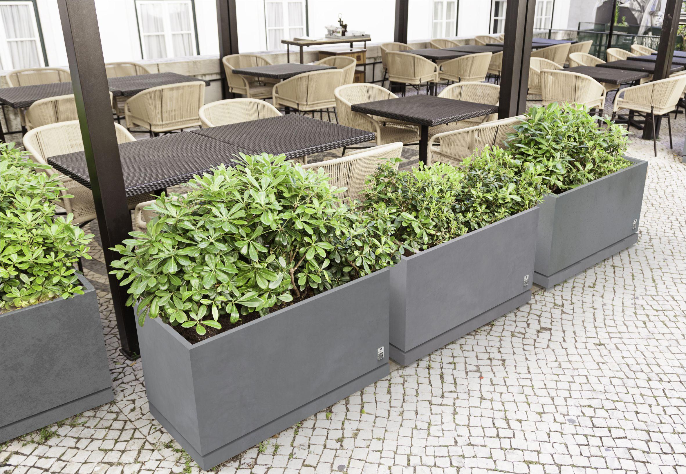 REGULAR planter with saucer